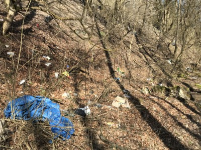Jarné čistenie lesa 2018