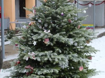 Rozsvietenie stromčeka v MŠ Ladce 2017