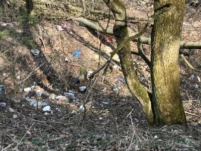 Jarné čistenie lesa 2018 - II. etapa