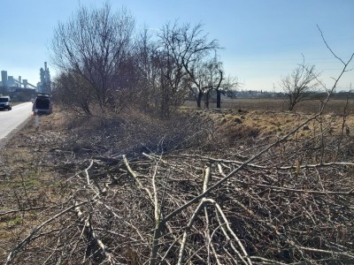 Čistenie Kucharovho potoka 2021