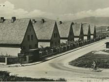 Dubnica nad Váhom 1950